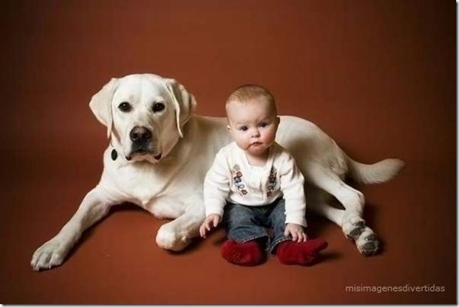 1 - niños con perros misimagenesdivertidas  (20)