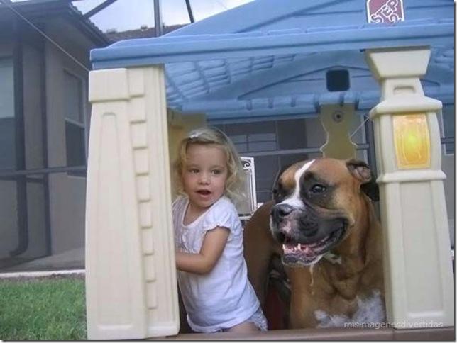 1 - niños con perros misimagenesdivertidas  (31)