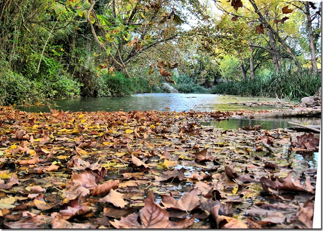 otoño_fhdr