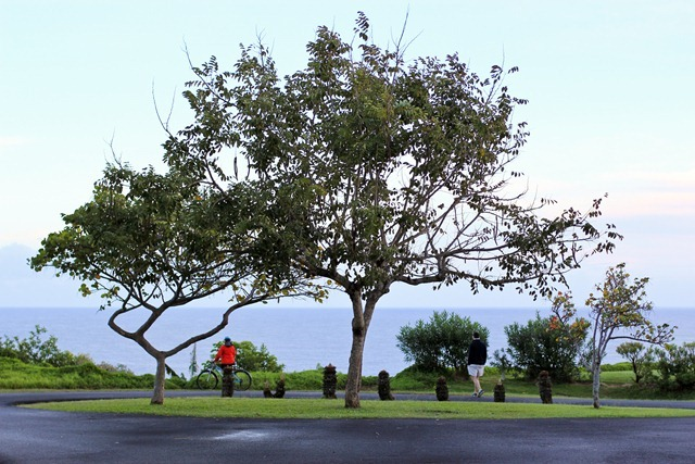 2011-02-24-Kauai-002web