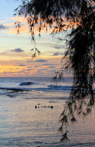 2011-02-28-Kauai-086web