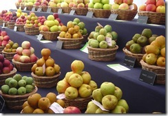 Apples at Europom
