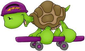 Skateboard Turtle
