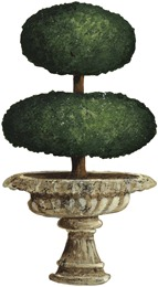 Topiary02