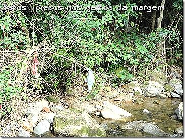 Margem com Lixo Rio das Pedras dez09