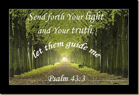 Psalm 43:3