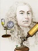 Robert_Hooke-cell