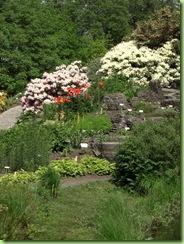 Botanisk have 7 juni 09 028