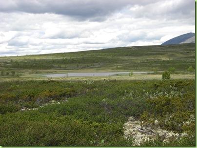 Tur til Murdalsetra i Skåbuferien juni 09 007