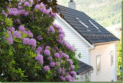 Ferie 2010, Bergen 160