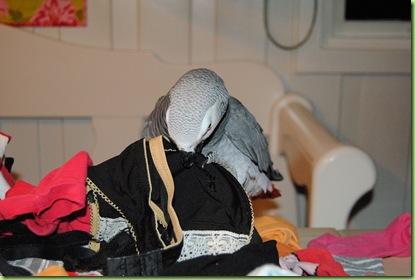 Otto fikser klesvasken 012