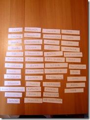 ultimi lavori  autunno-inverno 2009 002 [Risoluzione del desktop]