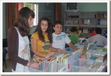 bibliotecarios (4)