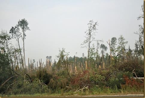 Ураган под Грязовцом