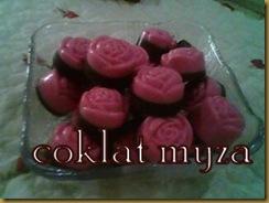 Coklat 5.3.2011 093