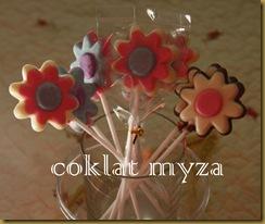 Coklat 16.3.2011 012