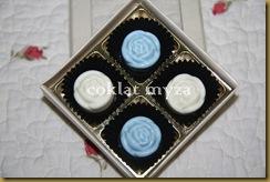 Coklat 16.3.2011 056