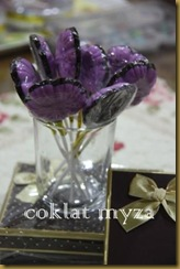 Coklat Myza 19.3.2011 034