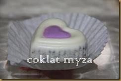 Coklat Myza 19.3.2011 085