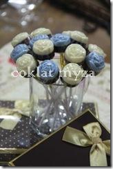 Coklat Myza 19.3.2011 050