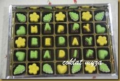 Coklat 6.4.2011 041