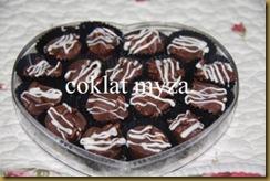 Coklat 1.4.2011 005