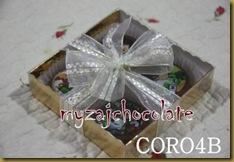 Coklat dan hiasan 9.4.2011 013