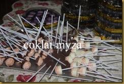 Coklat 4.4.2011 003