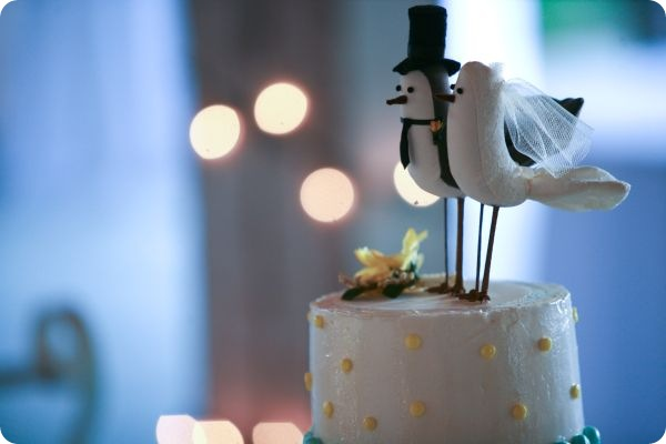 birdcake2