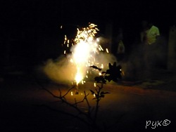 luces 2009 (3)