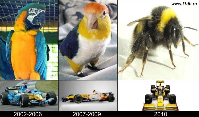 Renault 2002-2006 2007-2009 2010 пчелка попугаи
