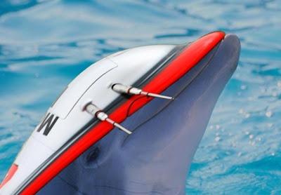 дельфин McLaren на тестах в Каталуньи 2011