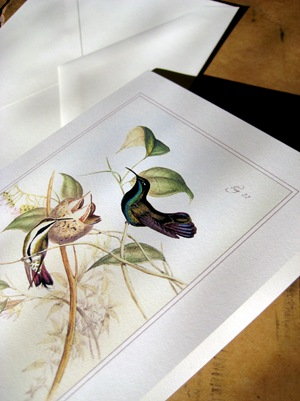 Hummingbirds and nest card detail
