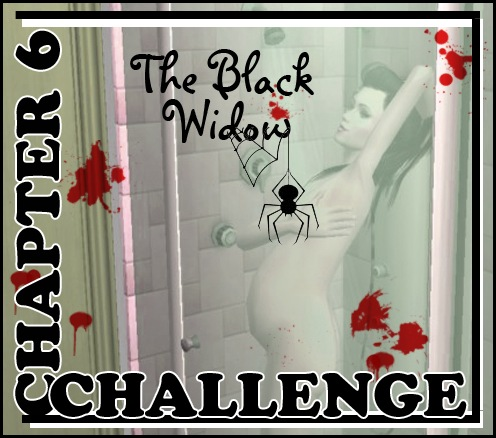 blackwidowchallengechapter6