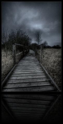 No_choices_by_zardo