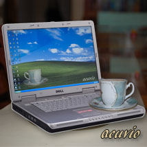 Laptop funny photo