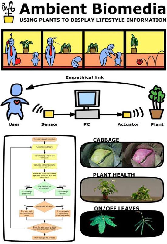 Ambient Biomedia
