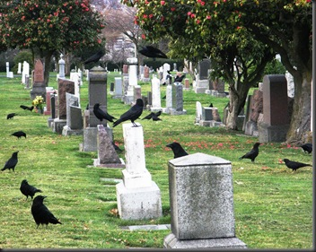 cemiterios