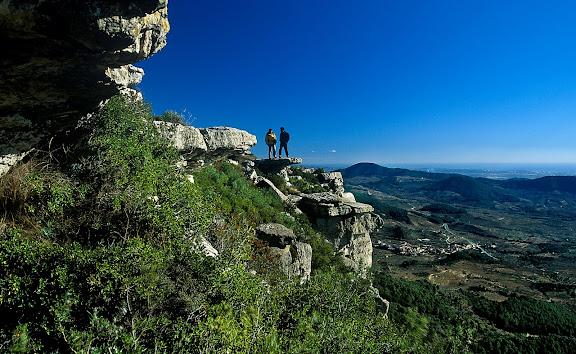 Serra de la Mussara des de la Mola, al fons, Vilaplana, Muntanyes de Prades,Vilaplana, Baix Camp, Tarragona2002.12.31