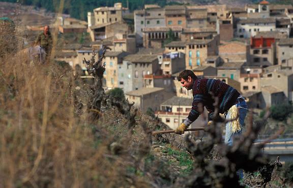Vinyes velles de coster, DOQ PrioratLa Vilella Baixa, Priorat, Tarragona2003.03