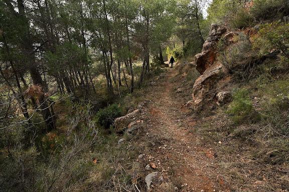 Camí de la Drecera, antic camí de ferradura que connecta La Morera amb Poboleda. Xarxa de camins del Priorat. La Morera de Montsant, Priorat, Tarragona
