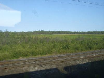 タイガの森と湿地帯