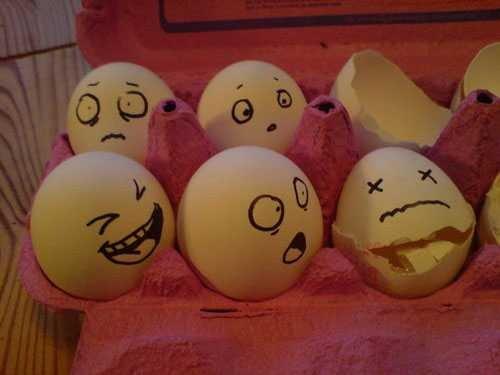 huevos miblogdecosasdivertidas (13)