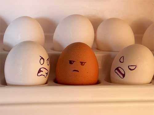 huevos miblogdecosasdivertidas (14)