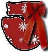 Christmas blanket J