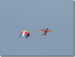 5608 Kites South Padre Island Texas