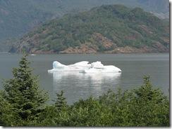 4429 Mendenhall Glacier AK