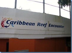 7698 Caribbean Reef Encounter Coral World Charlotte Amalie St Thomas USVI