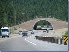 9393 Animal Bridge on US 93 MT