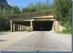 0474 Snowsheds Glacier National Park BC